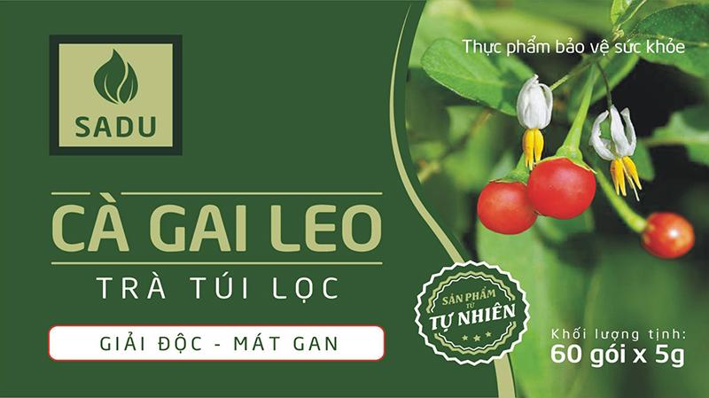 Bao bì sản phẩm Cà Gai Leo Trà Túi Lọc công ty công nghệ cao Thăng Long