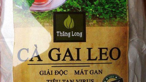 Gói trà cà gai leo cỡ lớn 1kg